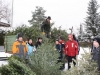 christbaum_aktion_2009_006