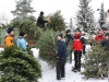 christbaum_aktion_2009_008