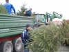 christbaum_aktion_2013_003